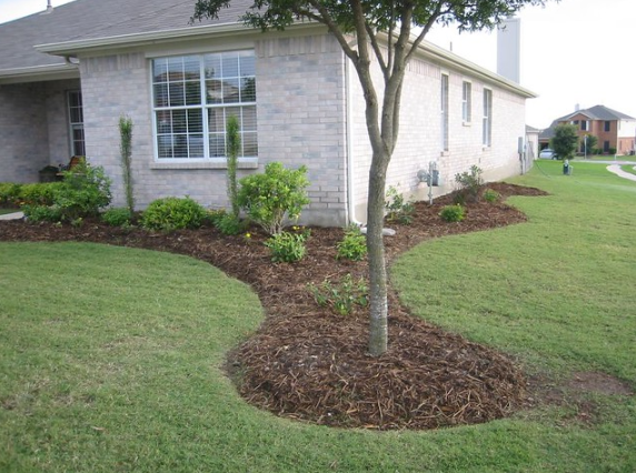 this image shows residential and commercial tree service