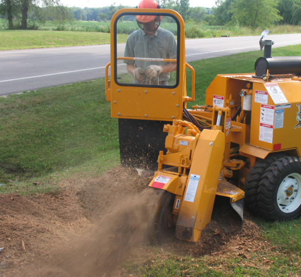 this is an image of stump grinding in Carlsbad